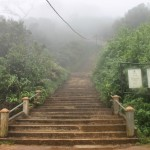 Adam´s Peak: Sri Lankas berühmteste Treppenstufen