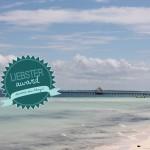 Liebster Award – 11 Fragen & persönliche Antworten