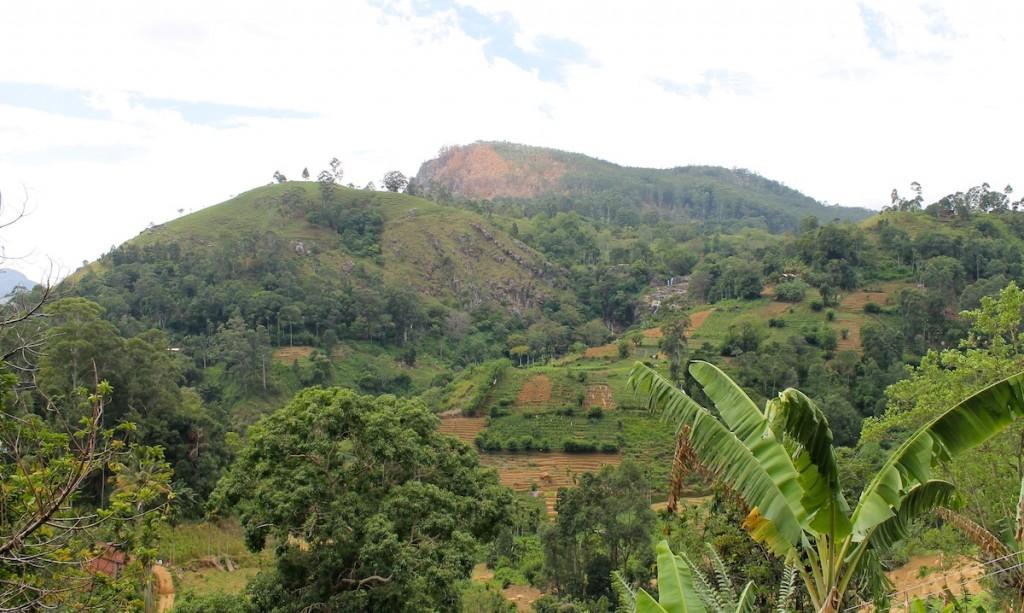 Wandern Hochland Sri Lanka