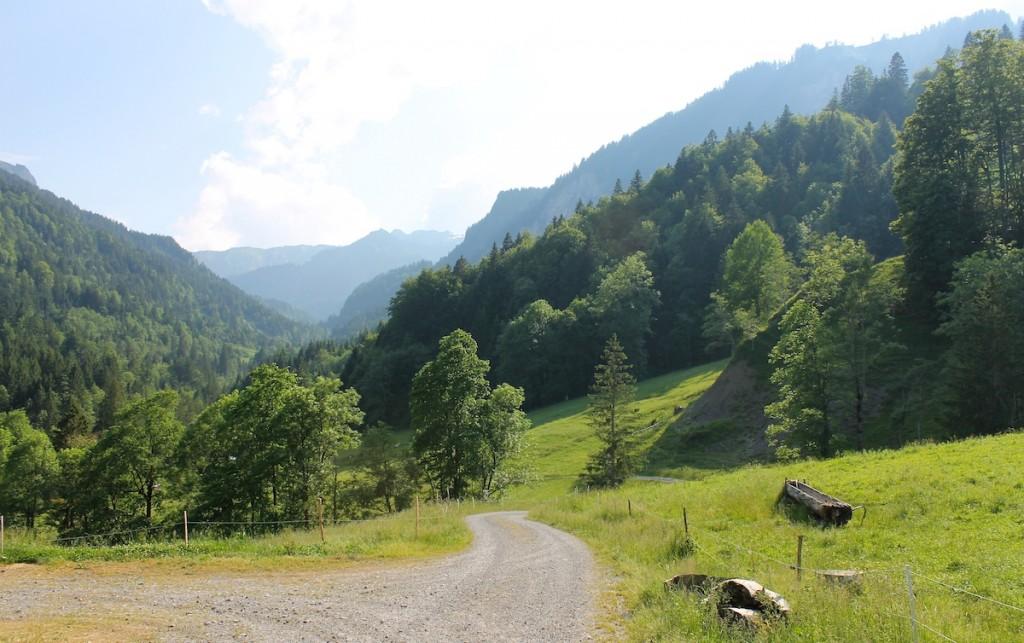 Wanderweg in den Bergen im Bregenzerwald