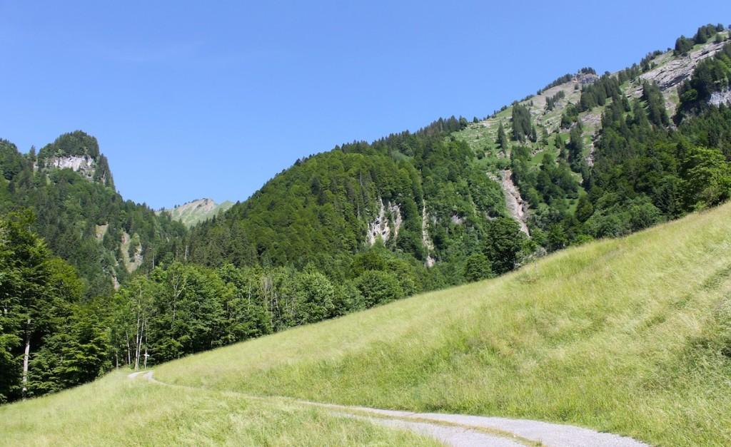 Wanderweg durch Wiesen mit Blick auf die Berge
