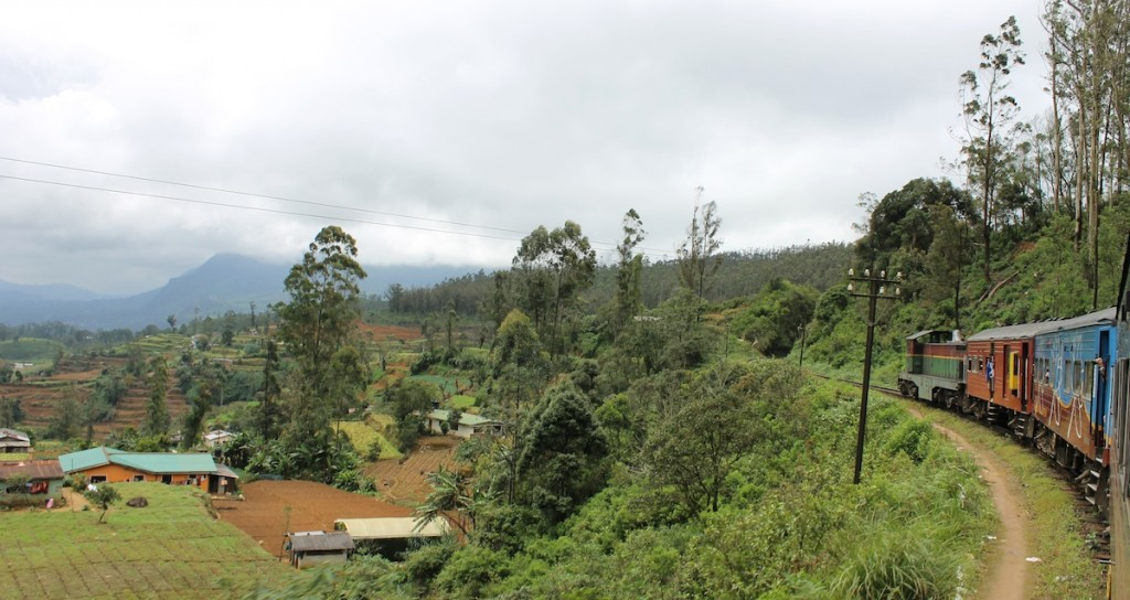 Zug in Landschaft in Sri Lanka