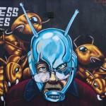 Street Art Festival in Düsseldorf | Fotoalbum