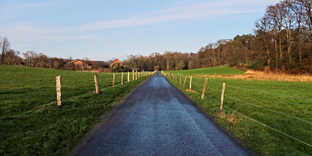 Wanderweg zwischen Feldern in Düsseldorf