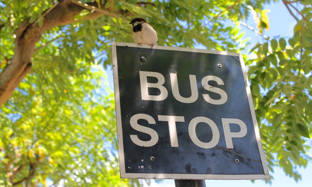 Mauritius Rundreise mit öffentlichen Verkehrsmitteln