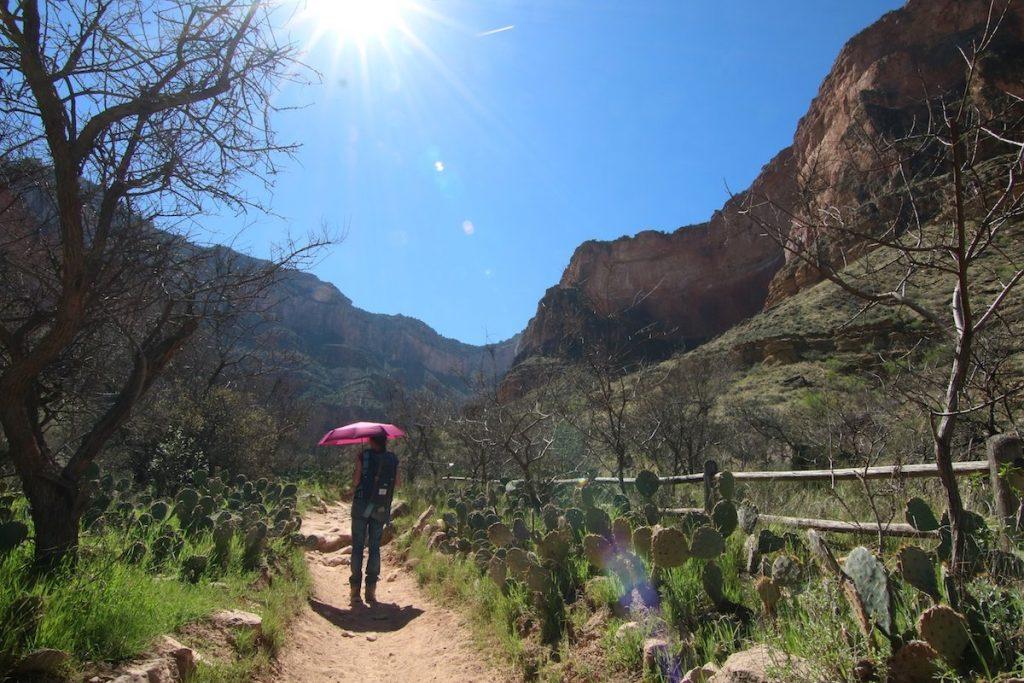 Im Grand Canyon wird es heiß