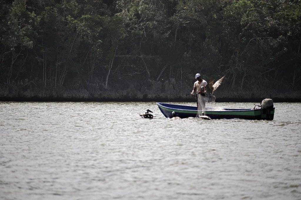 Fischer bei Samaná