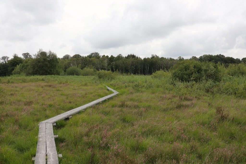 Wochenende in Winterswijk Tipp Moor