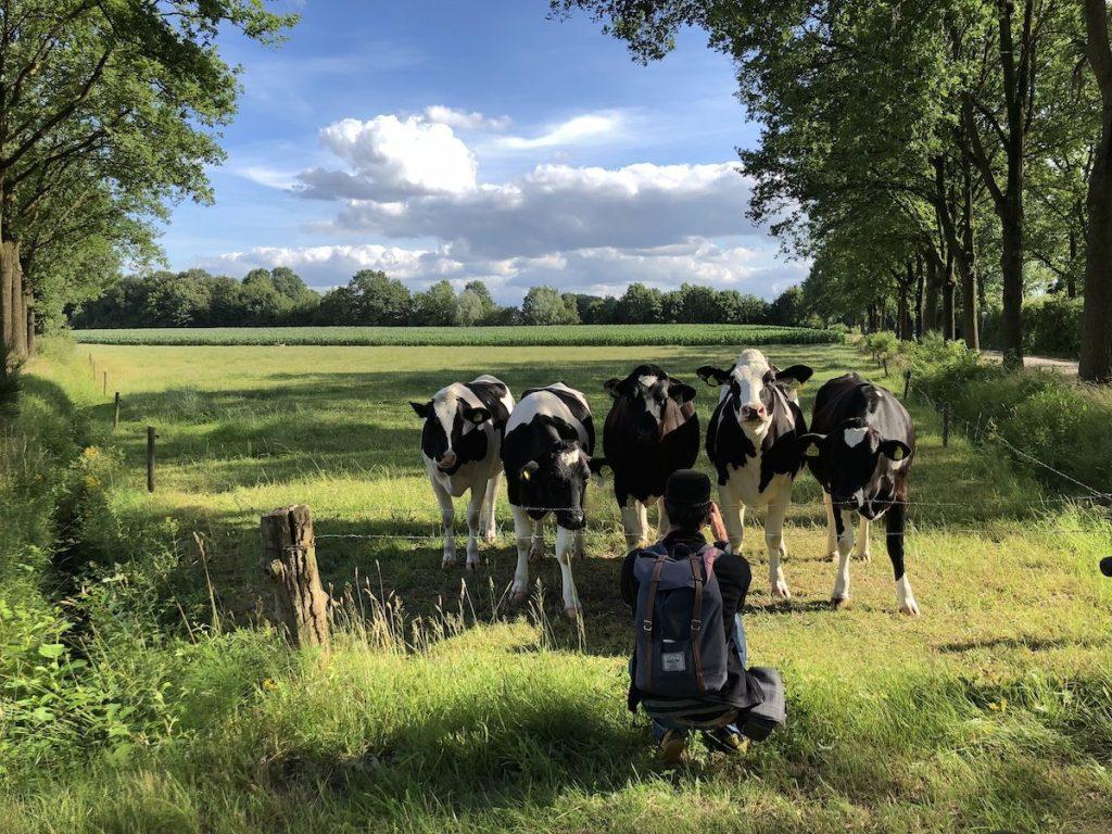 Wochenende in Winterswijk Natur