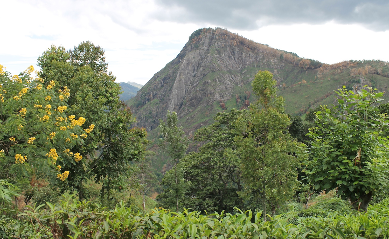 Wandern in Sri Lanka