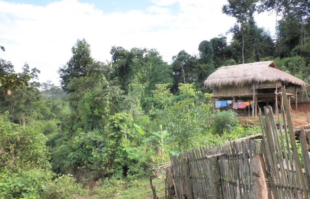 Natur und ein Bambushaus in Thailand