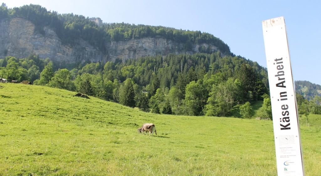 Info Säule im Bregenzerwald