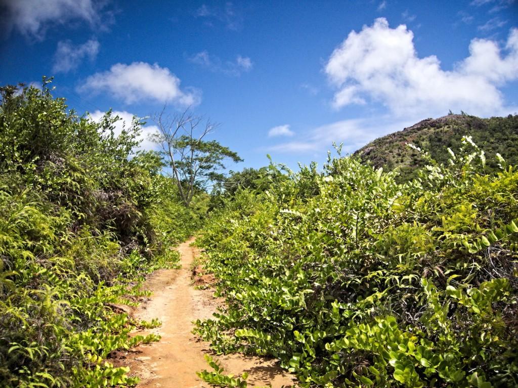 Wanderweg auf den Seychellen