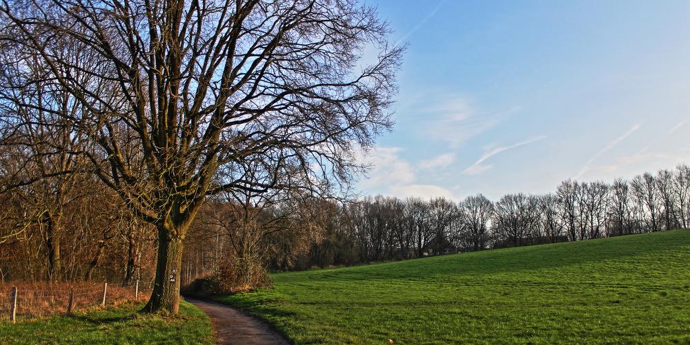 Wandern im Grafenberger Wald – Tour bei Düsseldorf