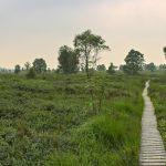 Wandern im Hohen Venn | Video