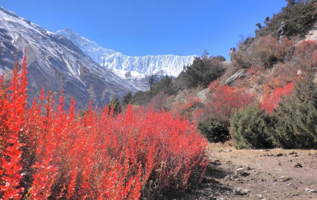 Top Reiseziele Nepal