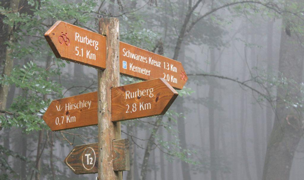 Wandern im Nationalpark Eifel
