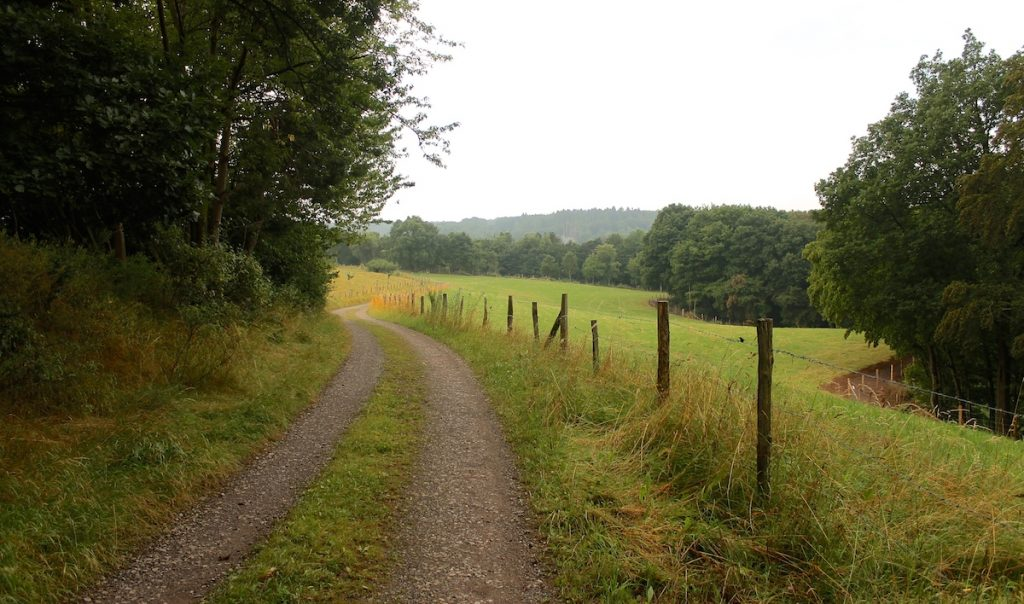 Wanderweg in der Eifel